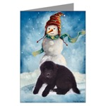 Newfoundland Christmas cards in single card or multi packs availalbe.
