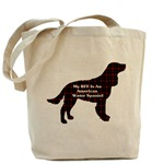 American Water Spaniel tote bag, just one of several great accessories for water spaniel lovers