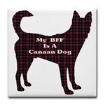 Canaan dog owners t-shirts, sweatshirts, and other apparel to show your breed pride