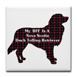 Terrific gifts for duck toller lovers, mugs, magnets, postes, cards, prints, and more housewares