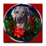 We have some beutiful weimaraner Christmas gifts. Tile coasters, mugs, steins, and more holiday gift ideas.