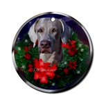 Weimaraner Christmas art ornament will be a favorite on your tree, or use as a gifts topper.