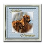 golden retriever gifts of apparel, mugs, steins, posters, keepsake boxes, more